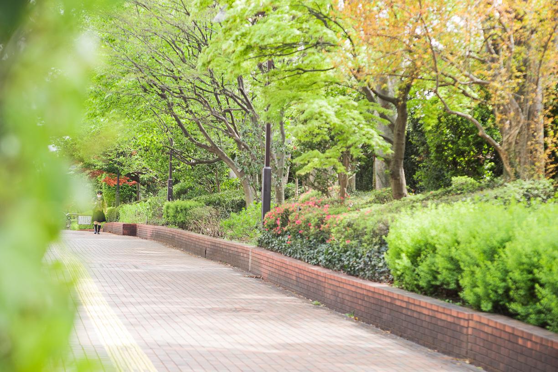 小竹向原駅周辺の街並み