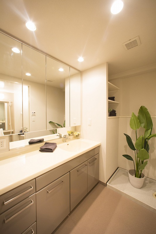 清潔感のあるシャワー付洗面化粧台