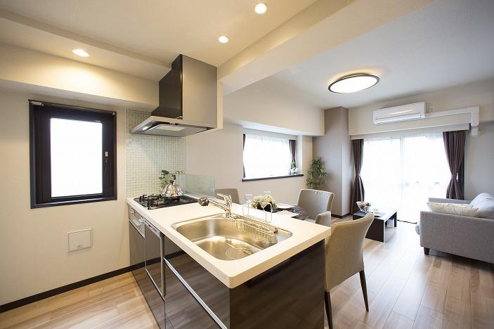 ビルトイン食器洗浄乾燥機付、システムキッチン交換