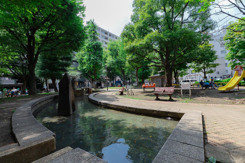 入新井公園 徒歩約3分(約220m)
