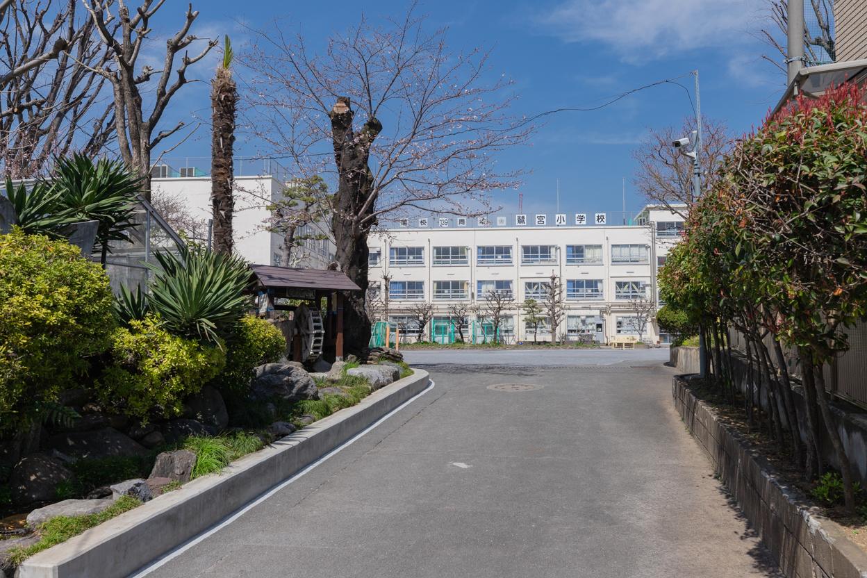 鷺宮小学校 徒歩約5分(約400m)