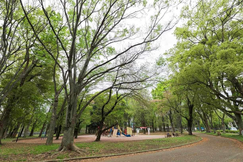 城北中央公園 徒歩約4分(約300m)